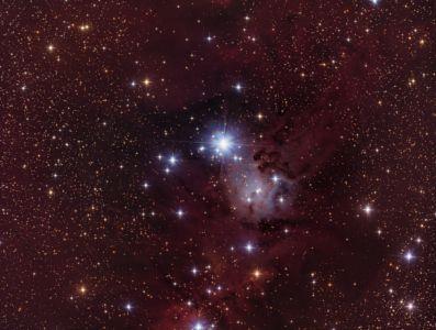 NGC 2264 - 27.01.17